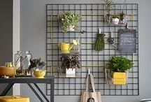 Garden Ideas / by Nicole Bohannan
