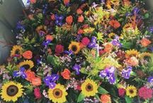 Every Day Flowers and Gifts / Flowers and gifts for all occasions! Knoxville, TN florist.