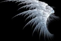 Angels / by Mel Scifi