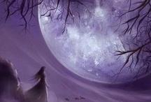 Fantasy / by Mel Scifi