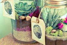 Mason Jars / Because who doesn't love these iconic, glass containers?