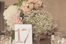 Wedding / by Corrine Mowery