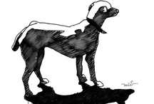 Doggart! / All art related to dogs