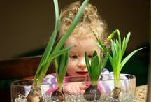Gardening with Kids / Start a garden and teach your kids about food, nature, and the environment