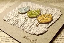 cards and paper / by Shelli