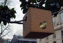Craft ideas - bird homes