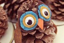 Owls Anyone???