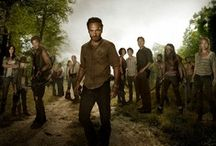 I Luv The Walking Dead / by Cindy Graham Reed
