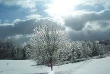Pictures I've Taken / God's creation is spectacular!