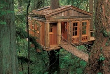 Tree Houses / by YourHomeBirth