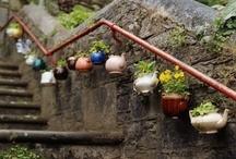 Gardening / by Tea in England