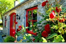 Cottages / by Tea in England