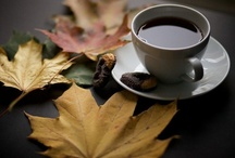 Autumn / by Tea in England