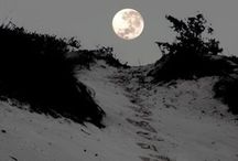 """bella luna / """"Do not swear by the moon, for she changes constantly. then your love would also change.""""  ― William Shakespeare, Romeo and Juliet / by 7 muses"""