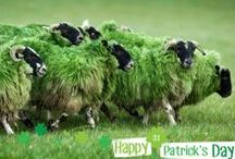 Go Green on St. Patrick's Day / We love how our national holiday St. Patrick's Day is colorfully celebrated all over the world! From iconic landmarks, to Irish Castles to even a herd of sheep - the whole world really embraces their love of green on March 17th. Here's a few of our favorite green pics. Share yours using #GoGreen now. Happy St. Patrick's Day!