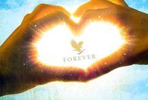 FLP / A Forever Living Prodacts minőségi termékeinek felhasználási lehetőségei