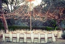 Tablescapes / by Rebecca Bell