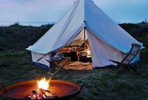 Camping / by Ashley Mathein