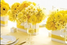 Table Settings / by Catherine Arsenault