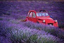 La Provence / the place I love to live / by La Brillane Aix en Provence