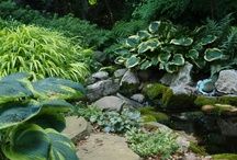 Garden Ponds / Thinking of adding a pond to your landscape? Get inspired by these great ideas! www.meadowsfarms.com