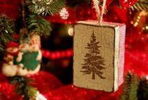 Farmhouse Christmas / by Connie