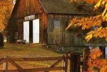 Autumn on the Farm / by Connie