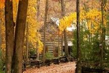 Autumn at the Cabin / by Connie