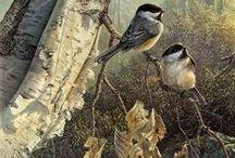 Art Oiseaux