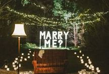 Marry Me / by Anndraea Gledhill