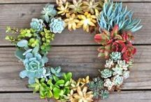 Wreath inspirations... / by Kelly Holland