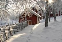 Snow.... / by Shelia Spurlin