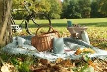 picnics / by Shelia Spurlin