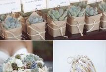 Party Favors / Ideas for Party Favors