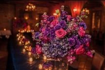 Katie's Wedding / by Laura Welch
