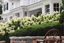 Nest: Gardens / by Stephanie Clark