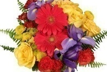 """Back to School- """"Teacher's Pet"""" Flower Arrangements  / Start the new school year off in style....  Make her day with a beautiful arrangement of flowers....  Sure to give you braggin' rights as the Teacher's Pet!!"""