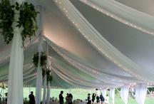 Tent wedding / by Cindy Barrett