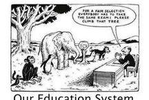Education/CC/High Stakes Testing / by Liz Vetter