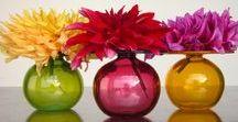 Favorite Flowers & Plants