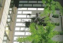 Garden and exterior design