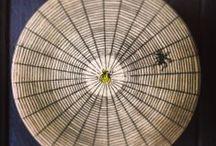 BUTTERFLIES & BUGS / by JOHN DERIAN COMPANY