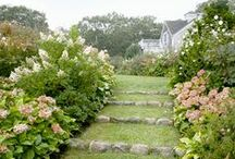 outdoor space / by Susan Lowery
