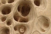 Natural and Organic Form / Images of natural forms and artistic images on this theme / by David Boyle AAAArtDept