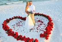 Weddings on the Beach / IRB is the perfect place to get married!
