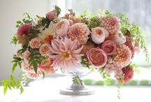 FF - Bella Fiori / Flirty Fleurs founder, Alicia Schwede, owns the floral design studio - Bella Fiori in Washington State. All design work featured on this page was created by Bella Fiori.
