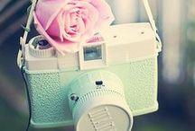 {Vintage Cameras} / Vintage cameras to die for.
