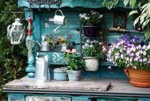 Garden Making / beautiful gardens