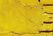 jaune / by Jenna Rainey