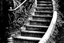 Taking the Stairs / by Tina Nalow